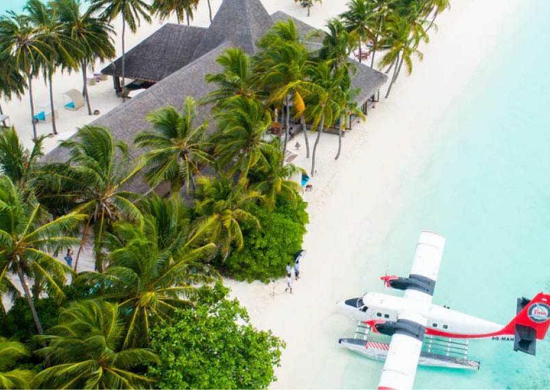 Coronavirus summer travel and safety tips, recipe…